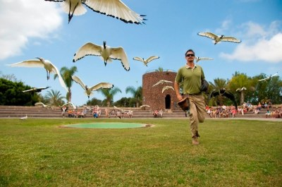 Jungle park Tenerife - free shuttle bus - online tickets
