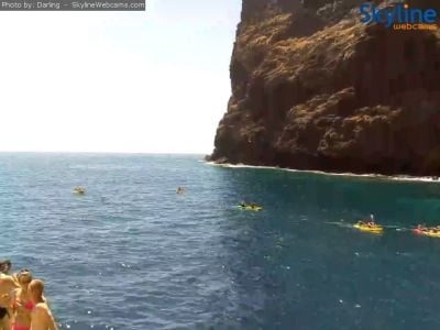 web camera, tenerife, port, royal delfin, catamaran, webcam, las americas, puerto colon